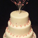 3146 wedding cakes with jewellery